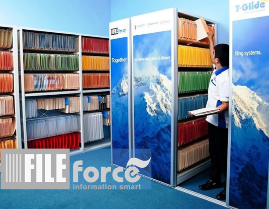 Fileforce is expert in office paper filing systems